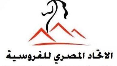 Photo of مستند – حكم نهائي وراء استبعاد حمدي من الفروسية